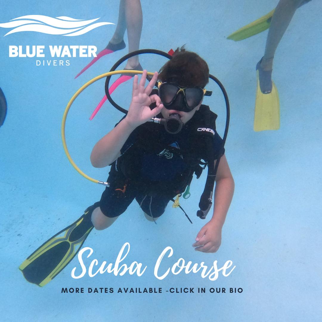 Scuba Courses